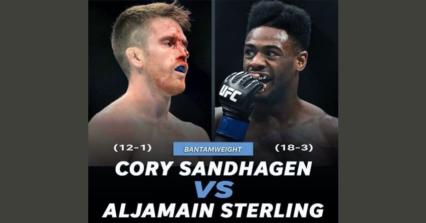 Aljamain Sterling next fight